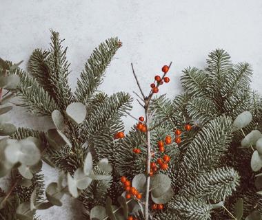 CHRISTMAS, WOBURN, 11/12/19